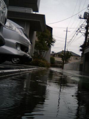 20100519_01.JPG