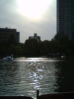 20100522_12.JPG